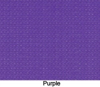 PurpleZ16Web-300x240